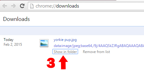 Chrome download pic 2