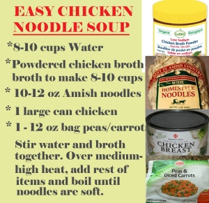 Easy chicken noodle